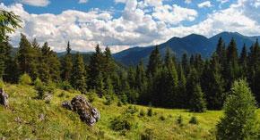 Turistika - Nízke Tatry Čierny Balog